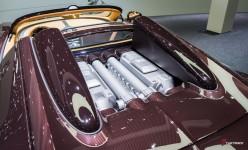 Bugatti-Veyron-Grand-Sport-Vitesse-Legendes-Rembrandt-Autosalon-Geneve-2014-1-13