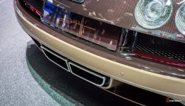 Bugatti-Veyron-Grand-Sport-Vitesse-Legendes-Rembrandt-Autosalon-Geneve-2014-1-6