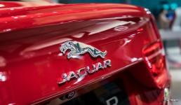 Jaguar-XE-Mondial-de-lautomobile-2014-14